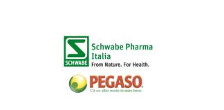 Schwabe ha acquistato Pegaso